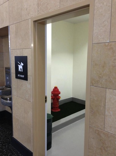 New Air Side Pet Relief Area At San Diego Airport San