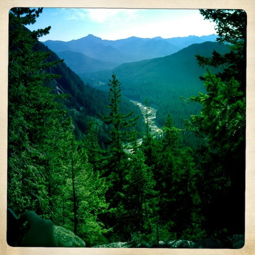The view (also from Ricksecker Point loop drive) away from the mountain, and along the course of the Nisqually River.