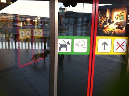 I love this shot from the Berlin Tegel airport not only because the sign on the door indicates that leashed dogs are allowed inside (so rare!) but also because you can see the reflection of leashed Spock (just to the left of the dog sign)