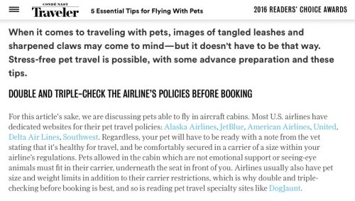 5_Essential_Tips_for_Flying_With_Pets