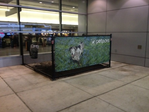 Pet relief area at Logan Airport's Terminal A
