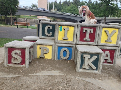 You'll find these giant alphabet blocks in Chloe's beloved Riverfront Park, home of many squirrels