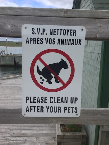 This sign is from Acadie, still (obviously) in the French-speaking part of the province. I admire the effort to capture actual moment of pooping, but I have to say that that creature really looks more like a giant squirrel.