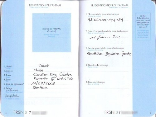 Pages 2-3: Please note that the date of Chloe's chip implantation is written European-style, with the day preceding the month