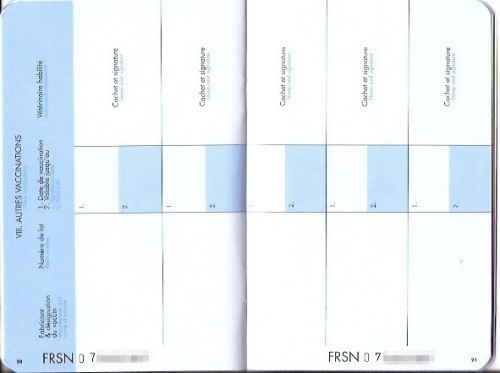 Pp. 20-21: Places to record other vaccinations. Pp. 22-23 are the same.