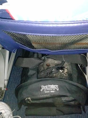 Reader S Report Large Sturdibag On A Southwest 737 700 Plane Dog