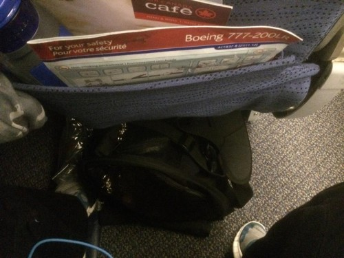 Large SturdiBag, containing Oscar the Dachshund, under an Air Canada 777-200LR Economy class seat