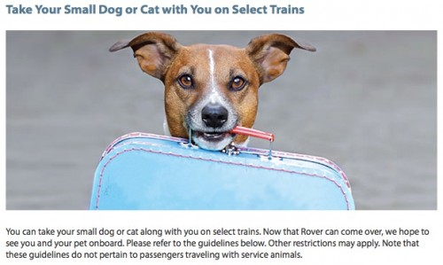 Amtrak_-_Experience_-_Onboard_-_Pets_on_Trains
