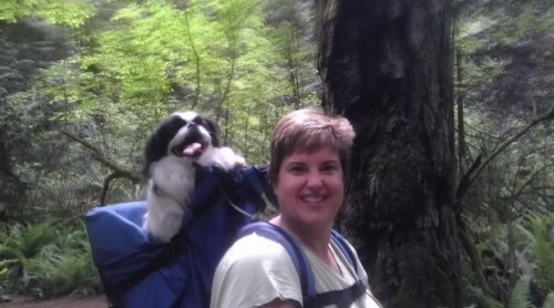 Dog_Traveler_Dog_Perch_Backpack_docx_-_Google_Docs