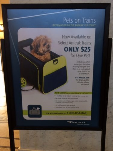 There are signs for pet travel in Amtrak stations! Hallelujah!
