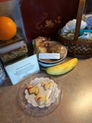 Here's a close-up of the treats; you can also see some of the other goodies she provided, including homemade muffins, with berries she and Dennis gathered, and homemade granola, specially nut-free for my sake.