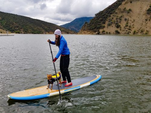 Paddleboarding together — Katherine was thrilled to report that Robin's becoming ever more comfortable with being onboard