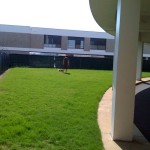 MEM lawn