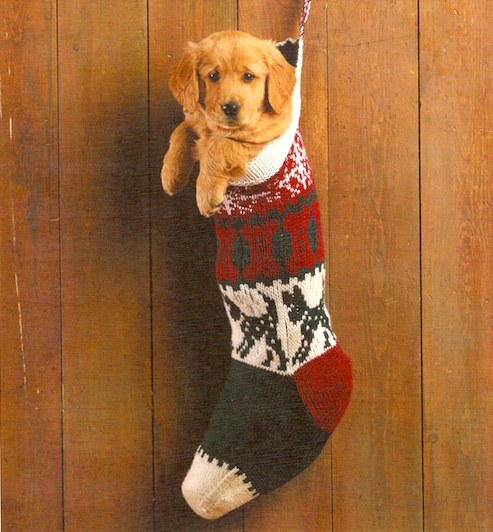 Holiday Hop for Pets giveaway: Win a hand-knit Christmas stocking, with your dog's name on it! » Dog Jaunt