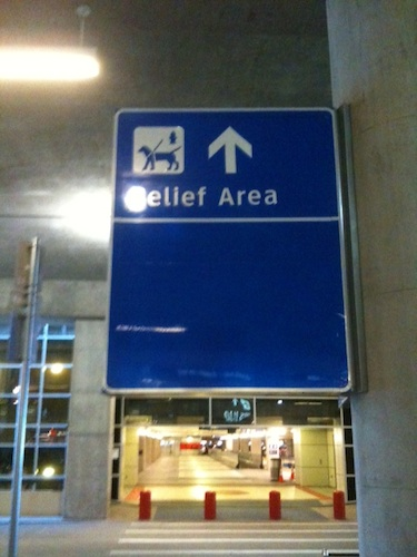 Pet Relief Areas At Dallas Fort Worth International
