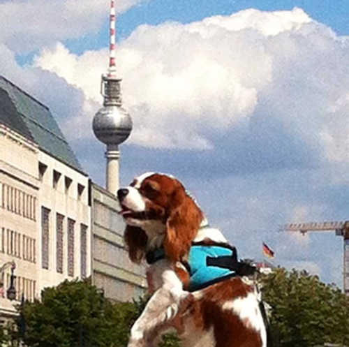 Spock in mid-air, Berlin's Fernsehturm (an enormously tall 1960's TV tower) in the background