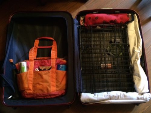 Chloe's orange and pink nylon travel tote, being packed in Big Red, her travel suitcase.